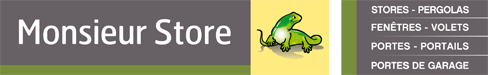 Présentation du logo de Monsieur Store Aix en provence, représentant un lézard sans griffe et la liste des produits suivantes : stores, pergolas, portes,  fenetres,  volets, portails, porte de garage